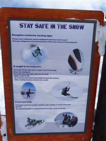 Share the snow poster.JPG