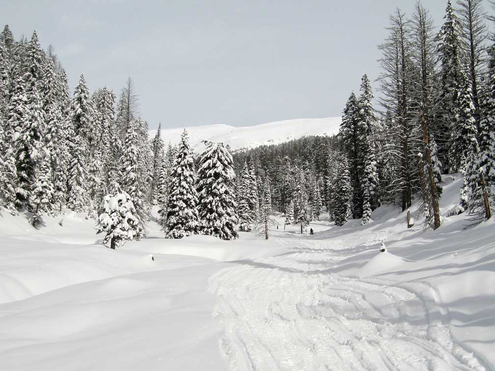 1 Sledding-Up-Taylor-Creek.jpg
