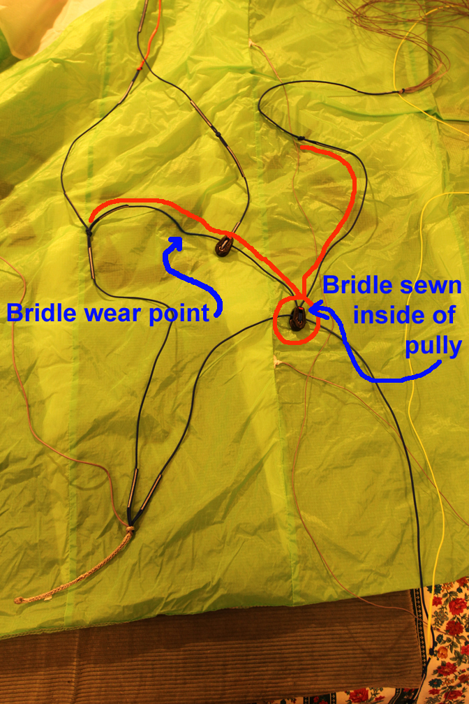 Bridle Wear 1.jpg