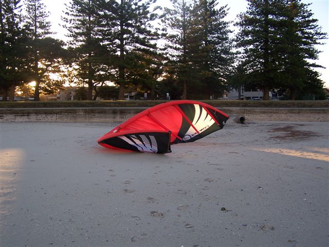 Kite in Wind.JPG