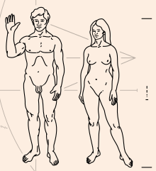 Pioneer_plaque_humans.svg.png